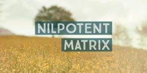 Nilpotent Matrix Problems and Solutions