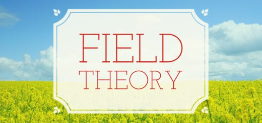 Problems and Solutions in Field Theory in Abstract Algebra