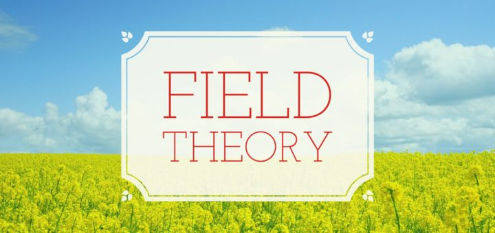 Field theory problems and solution in abstract algebra